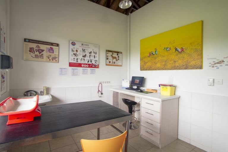 Spacious Consulting Rooms