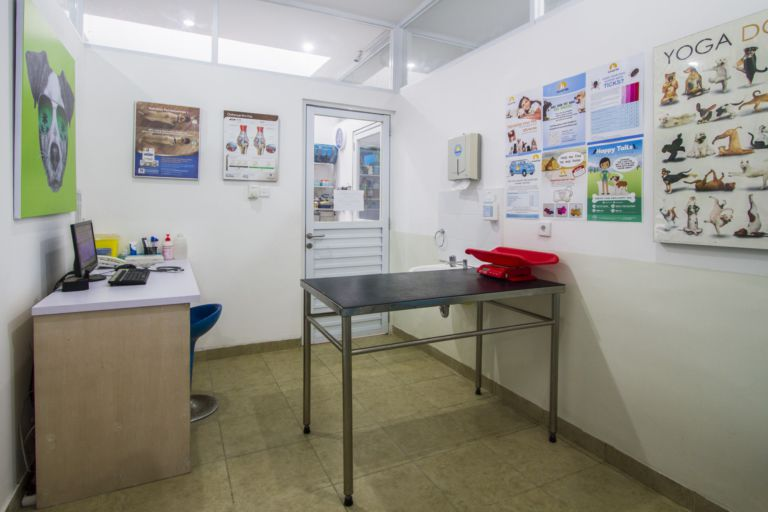 Three consulting rooms with vets available 24/7