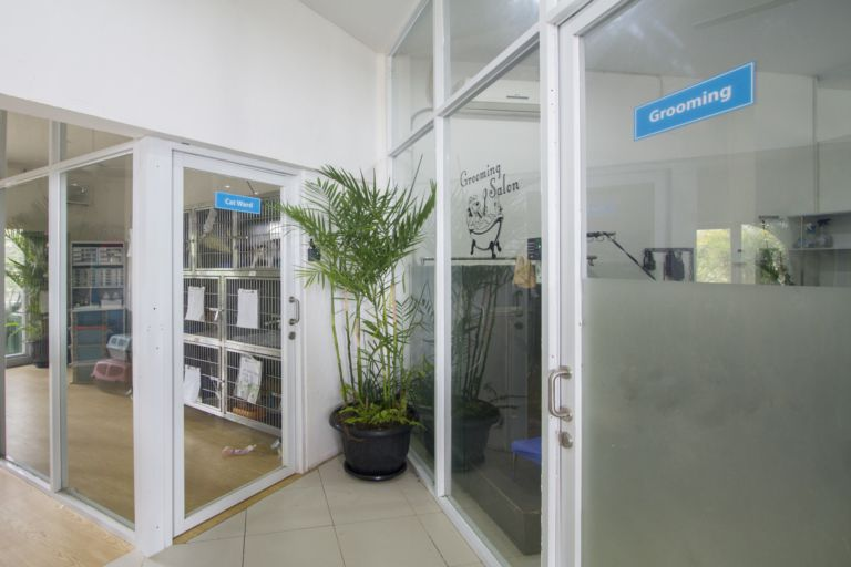 Our grooming salon is open 7 days a week ready to make your pet gorgeous!